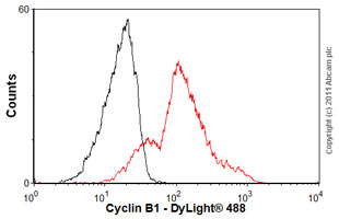 Flow Cytometry-Cyclin B1 antibody [Y106](ab32053)