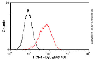 Flow Cytometry - Anti-HCN4 antibody [SHG 1E5] (ab32675)