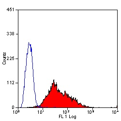 Flow Cytometry - CD147 antibody [OX114] (FITC) (ab34044)
