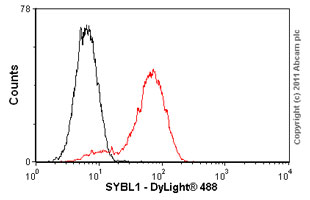 Flow Cytometry-SYBL1 antibody [158.2](ab36195)
