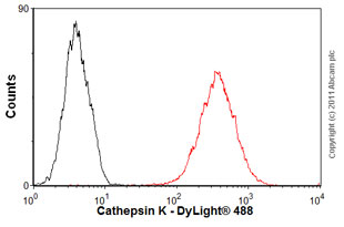 Flow Cytometry-Anti-Cathepsin K antibody [3F9] - Azide free(ab37259)