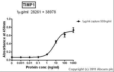 Sandwich ELISA - TIMP1 antibody - Carboxyterminal end (ab38978)