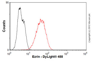 Flow Cytometry-Anti-Ezrin antibody [3C12](ab4069)