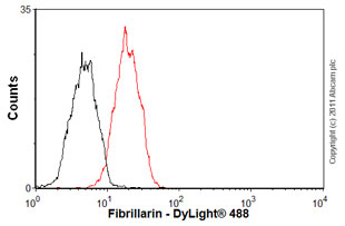 Flow Cytometry-Fibrillarin antibody [38F3] - Nucleolar Marker(ab4566)