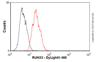 Flow Cytometry-Anti-RUNX3 antibody [R3-5G4](ab40278)