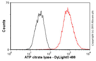 Flow Cytometry - ATP citrate lyase antibody [EP704Y] (ab40793)