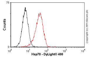 Flow Cytometry-Hsp70 antibody [C92F3A-5](ab47455)