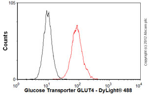 Flow Cytometry-Anti-Glucose Transporter GLUT4 antibody [mAbcam48547](ab48547)