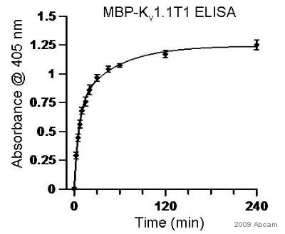 ELISA - Maltose Binding Protein antibody [MBP-17] (HRP) (ab49923)