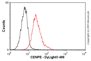 Flow Cytometry-CENPE antibody [1H12](ab5093)