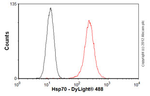 Flow Cytometry-Anti-Hsp70 antibody [2A4](ab5442)