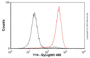 Flow Cytometry-Anti-Y14 antibody [4C4](ab5828)
