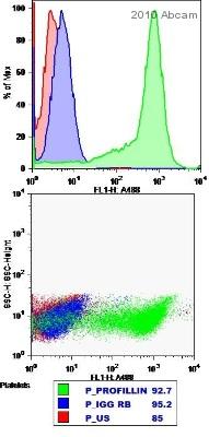 Flow Cytometry - Profilin 1 antibody - Carboxyterminal end (ab50667)