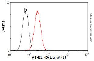 Flow Cytometry-Anti-ASH2L antibody [2046D2a](ab50699)