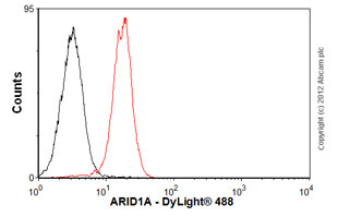 Flow Cytometry - Anti-ARID1A antibody [2035C5a] (ab50878)