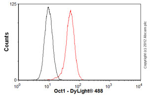 Flow Cytometry - Anti-Oct-1 [POU5I097] antibody (ab51363)