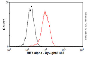 Flow Cytometry - Anti-HIF-1-alpha [EP1215Y] antibody (ab51608)