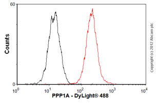 Flow Cytometry - Anti-PPP1CA + 1CB [EP1511Y] antibody (ab52619)