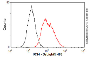Flow Cytometry-Anti-IRS4 antibody [EP907Y](ab52622)