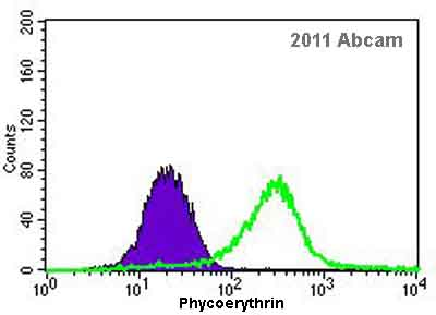 Flow Cytometry - NSE antibody (ab53025)