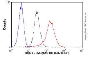 Flow Cytometry-Anti-Hsp70 antibody [BB70](ab53496)