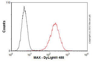 Flow Cytometry-Anti-MAX antibody [73C5a] - ChIP Grade(ab53570)