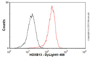 Flow Cytometry-Anti-HOXB13 antibody [mAbcam53931](ab53931)