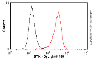 Flow Cytometry-BTK antibody [7F12H4,6G5F6](ab54219)