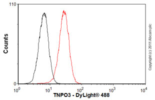 Flow Cytometry-TNPO3 antibody [3152C2a](ab54353)