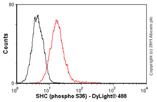 Flow Cytometry-SHC (phospho S36) antibody [6E10](ab54518)