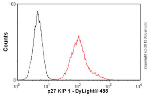 Flow Cytometry-Anti-p27 KIP 1 antibody(ab54563)