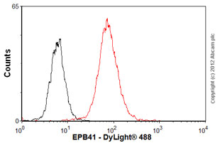 Flow Cytometry - Anti-EPB41 antibody (ab54597)