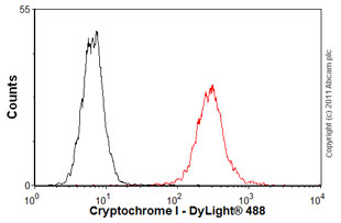 Flow Cytometry - Anti-Cryptochrome I antibody (ab54649)