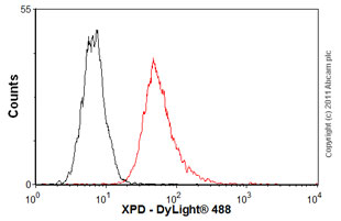 Flow Cytometry-XPD antibody(ab54676)