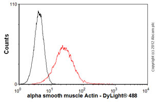 Flow Cytometry-Anti-alpha smooth muscle Actin antibody(ab54723)