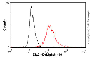 Flow Cytometry - Anti-Dlx2 antibody (ab54725)