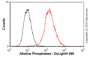 Flow Cytometry-Anti-Alkaline Phosphatase  antibody [4H1](ab54778)