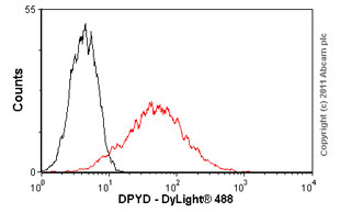 Flow Cytometry - DPYD antibody (ab54797)