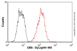Flow Cytometry-Anti-CBS antibody(ab54883)