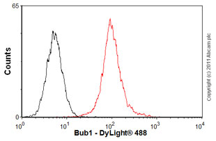 Flow Cytometry-Anti-Bub1 antibody(ab54893)