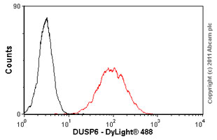 Flow Cytometry - DUSP6 antibody (ab54940)