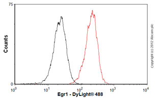 Flow Cytometry-Anti-Egr1 antibody [mAbcam55160](ab55160)