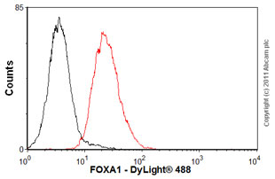 Flow Cytometry-Anti-FOXA1 antibody(ab55178)