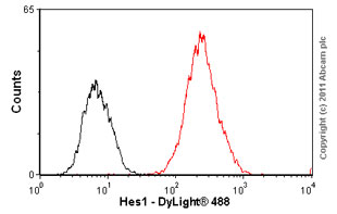 Flow Cytometry - Hes1 antibody (ab55265)