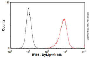 Flow Cytometry - Anti-IFI16 antibody (ab55328)