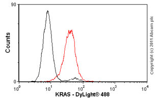 Flow Cytometry - Anti-KRAS+HRAS+NRAS antibody (ab55391)