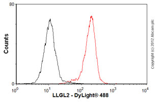 Flow Cytometry-Anti-LLGL2 antibody(ab55423)