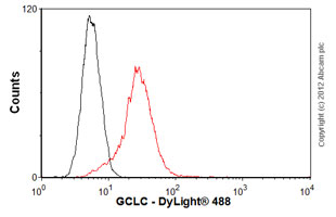 Flow Cytometry-Anti-GCLC antibody(ab55435)