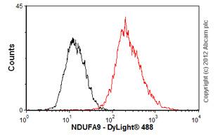 Flow Cytometry-Anti-NDUFA9 antibody(ab55521)