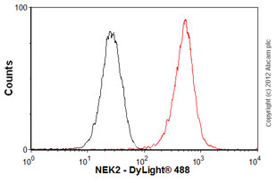 Flow Cytometry-Anti-NEK2 antibody(ab55550)